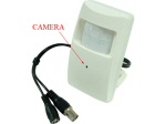 High Resolution Sony CCD Motion Detector Style High Resolution Color Camera